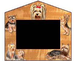 Picture Frame: Yorkshire Terrier